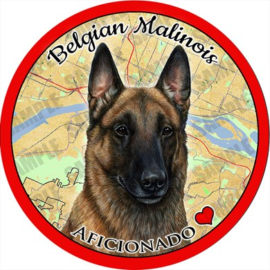 Raining Cats and Dogs | Belgian Malinois Car Coaster Buddy