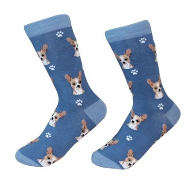 Raining Cats and Dogs |Chihuahua Pet Lover Socks