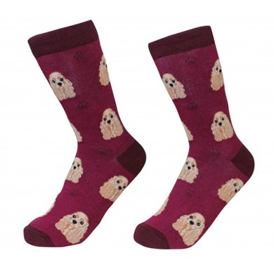 Raining Cats and Dogs |Cocker Spaniel Pet Lover Socks