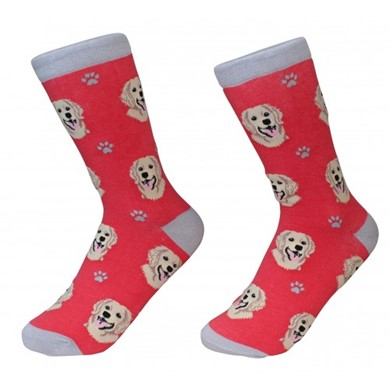 Raining Cats and Dogs |Golden Retriever Pet Lover Socks