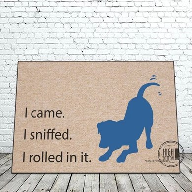 Raining Cats and Dogs | I Came I Sniffed I Rolled in It Door Mat