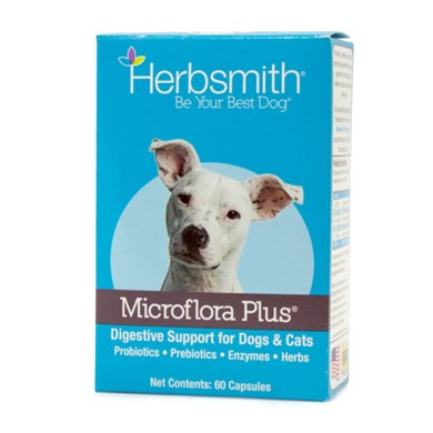 Raining Cats and Dogs | Herbsmith Microflora Plus Digestive Support