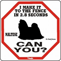 Maltese Make It to the Fence in 2.8 Seconds Sign