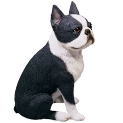 Boston Terrier Sandicast Original Figurine
