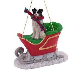 Border Collie Christmas with Sleigh
