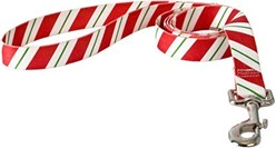 Peppermint Stick Leash