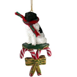 Candy Cane Landseer Christmas Ornament