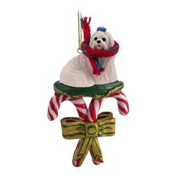 Candy Cane Maltese Christmas Ornament