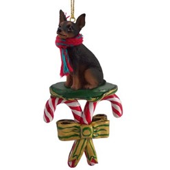 Candy Cane Miniature Pinscher Christmas Ornament- click for more breed colors