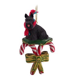 Candy Cane Scottish Terrier Christmas Ornament
