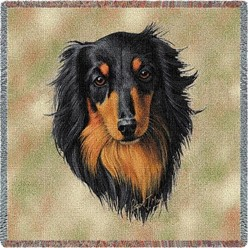 Dachshund Black Longhaired Throw