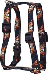 Flaming Skulls Harness