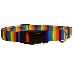 Rainbow Stripes Collar