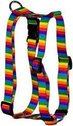 Rainbow Stripes Harness