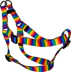 Rainbow Stripes Step-In Harness