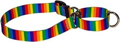 Rainbow Stripes Martingale Collar