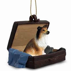 Collie Traveling Companion
