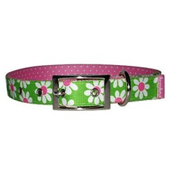 Uptown Green Daisy Buckle Collar