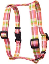 Madras Harness