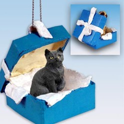 Black Cat Gift Box Holiday Ornament