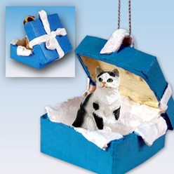 Black and White Cat Gift Box Holiday Ornament