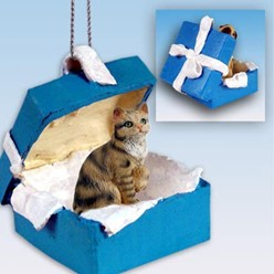 Brown Tabby Cat Gift Box Holiday Ornament