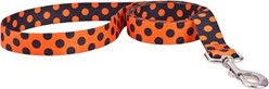 Halloween Polka Dot Leash