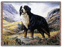 Bernese Mountain Dog Throw Blanket, Made in the USA