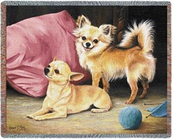 Chihuahua Throw Blanket, Made in the USA