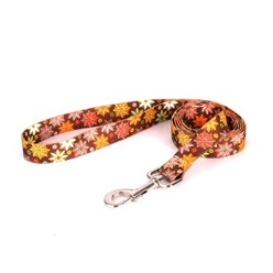 Autumn Flowers Leash