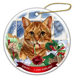 Santa I Can Explain Orange Tabby Cat Christmas Ornament