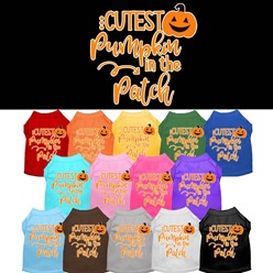 Cutest Pumpkin in the Patch Pet Tee