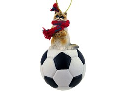 Ragdoll Cat Sport Christmas Ornament