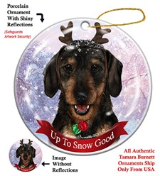 Dachshund Up To Snow Good- click for more breed options