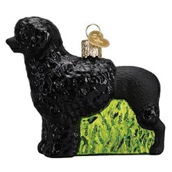 Portuguese Water Dog Old World Christmas Ornament