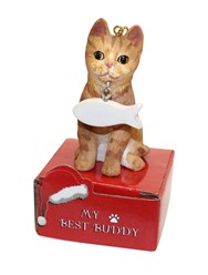 Orange Tabby Cat My Best Buddy Christmas Ornament