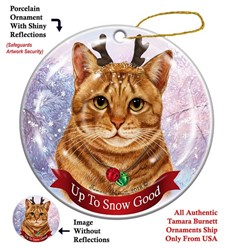 Orange Tabby Cat Up to Snow Good Christmas Ornament