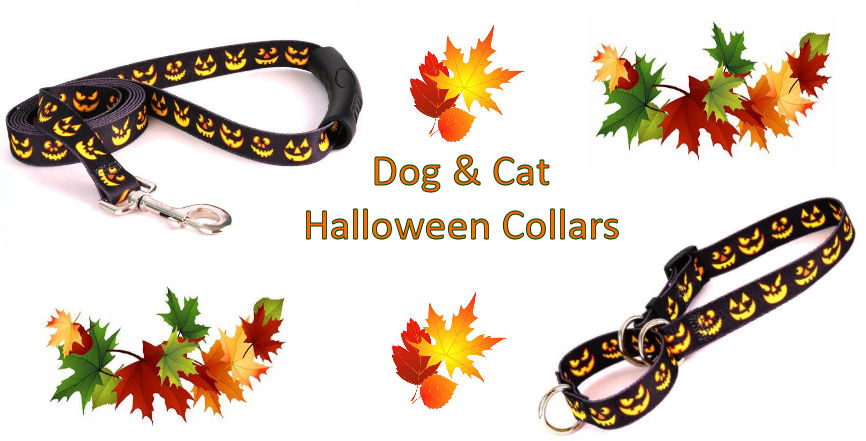 Halloween Dog and Cat Collars